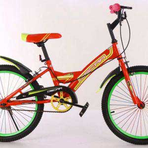 "20"" Bicycle Oscar"